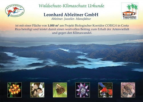 Muster- Urkunde Regenwald der Österreich